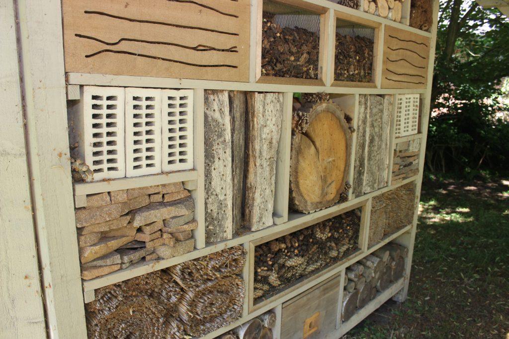 Am großzügigen Insektenhotel ist viel los. Die Insekten fühlen sich richtig wohl. Nahrung finden die kleinen Tierchen auf dem schönen Gelände reichlich.